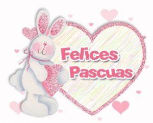 Imágenes del conejo pascuas (4)