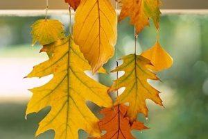 Ideas para el otoño